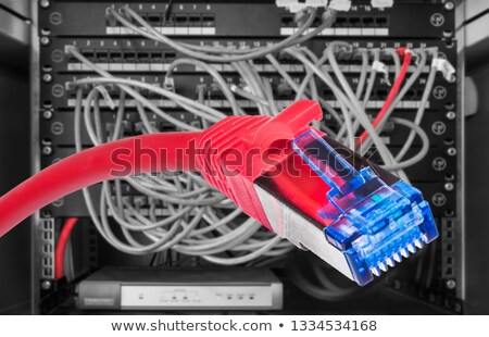 Black, red and blue UTP cords with RJ-45 Connectors  Stock photo © zhekos