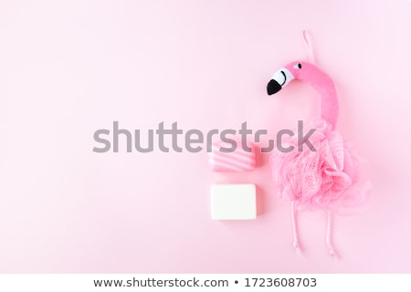 Body care: Woman in shower with washcloth and foam stock photo © CandyboxPhoto
