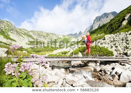 vrouw · backpacker · groot · koud · vallei · hoog - stockfoto © phbcz
