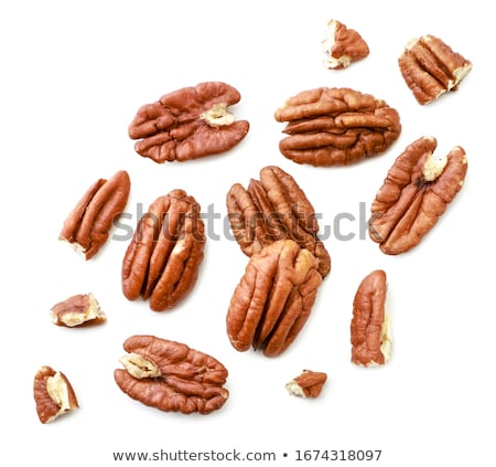 Pecans  Stock photo © Melpomene