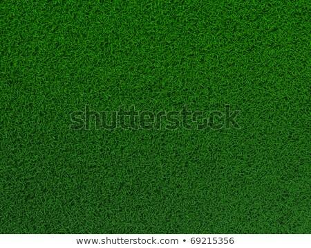 Voetbalveld toonhoogte gras voetbal voetbal Stockfoto © experimental