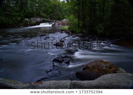 Висконсин реке красочный осень листьев Сток-фото © mybaitshop