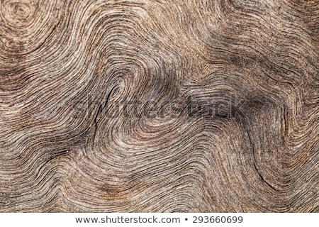 Eski ahşap kaba havlama gri doku ağaç Stok fotoğraf © pzaxe