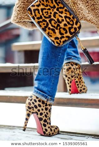Female high-heeled boots and beautiful bag Stock photo © PawelSierakowski