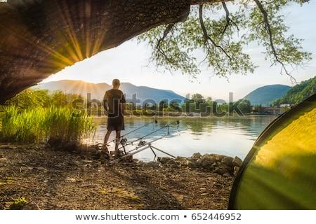céleste · rivière · coucher · du · soleil · belle · arbre · paysage - photo stock © macros