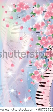 Voorjaar banners sakura pianotoetsen hemel muziek Stockfoto © carodi