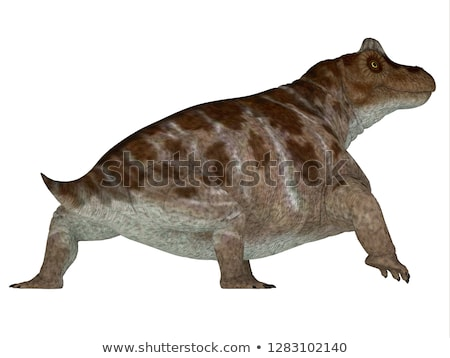 Keratocephalus Dinosaur Stock photo © AlienCat