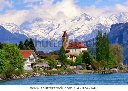 Pequeno aldeia alpino lago Suíça ensolarado Foto stock © rglinsky77