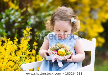 easter egg and forsythia tree in spring outdoor stock photo © juniart