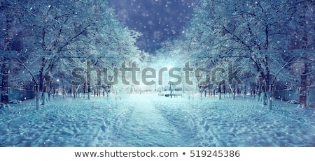 Christmas town view window stock photo © Anterovium