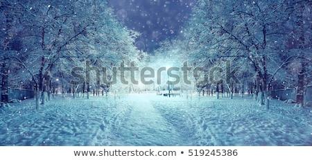 Karácsony város kilátás ablak klasszikus bútor Stock fotó © Anterovium