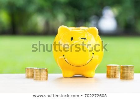 spaarvarken · hoog · 3d · render · roze · zachte - stockfoto © idesign