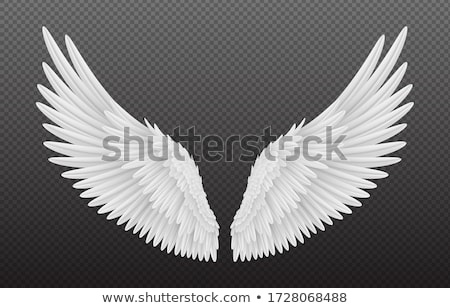 Illustration Holy Angel With Wings Stok fotoğraf © MarySan