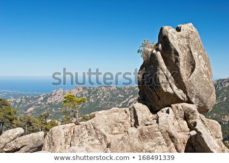 the sentinel rock of corsica stock photo © richardjary