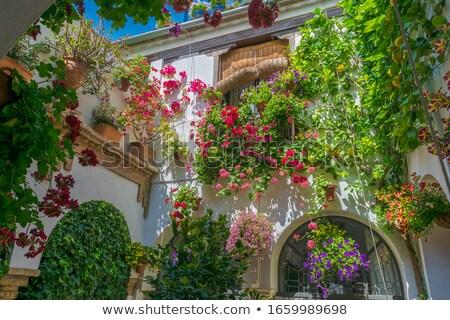 Espagnol fenêtre au-dessous mur bois Photo stock © russwitherington