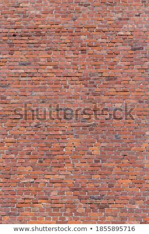 Vermelho parede harmônico padrão pintar pintura Foto stock © meinzahn