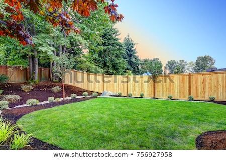 Ogród ogrodzenia 3D wygenerowany zdjęcie zielone Zdjęcia stock © flipfine