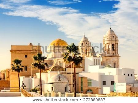 cathédrale · Espagne · scénique · vue · belle · ciel - photo stock © hasloo