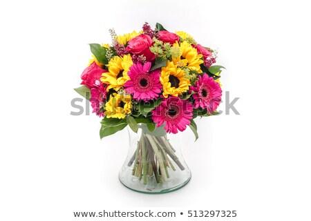 花瓶 異なる 色 孤立した 白 春 ストックフォト © compuinfoto