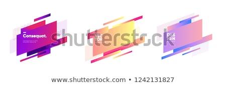 Abstract meetkundig banner vector ingesteld kleurrijk Stockfoto © beaubelle