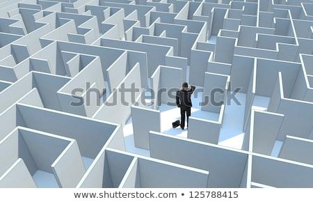 бесконечный · лабиринт · белый · стен · помочь · головоломки - Сток-фото © kirill_m