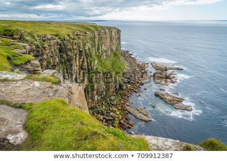 южный Шотландии небе трава зеленый Сток-фото © photopb