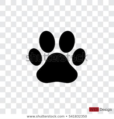 aranyos · kutya · macska · mancs · nyomtatott · fekete - stock fotó © leonardo