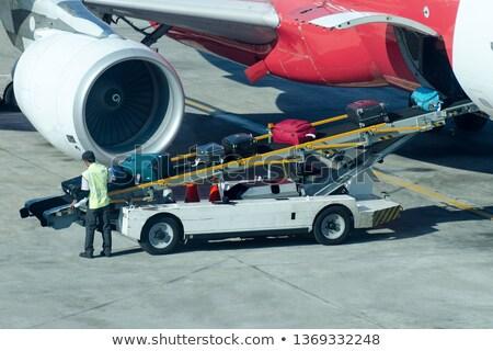 Załadować bagażu płaszczyzny ilustracja pracownika pracy Zdjęcia stock © adrenalina
