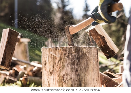 Stock photo: Wood chopping with hand axe