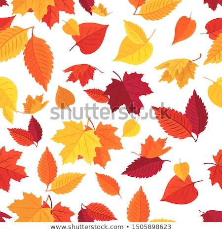 Seamless with autumn leaves. EPS 10 Stock photo © beholdereye