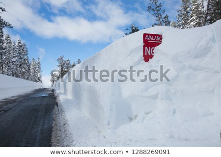 Stop sign buried in snow drift Stock photo © erbephoto