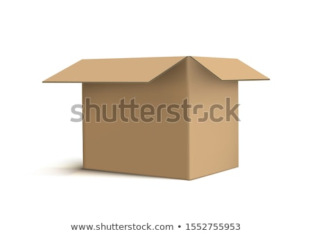 Open brown cardboard box Stock photo © cherezoff