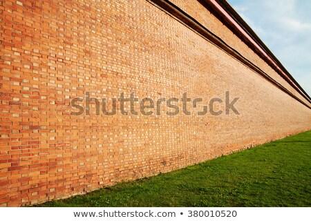 Diagonal green brick wall texture Stock photo © stevanovicigor