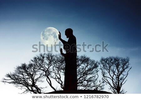 Monument hand holding the moon Stock photo © artjazz