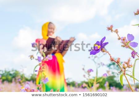 Nő egyedül kint növény előtér káprázatos Stock fotó © dash