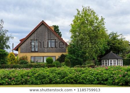gyönyörű · régi · ház · bejárat · fa · lépcsőház · ház - stock fotó © luissantos84