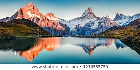 Foto stock: Montanhas · grama · neve · fundo · montanha · verão