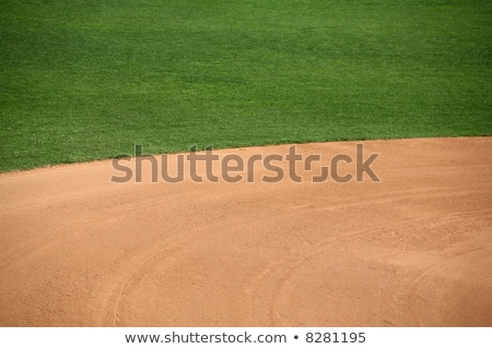 Baseball infield sandy background texture Stock photo © njnightsky