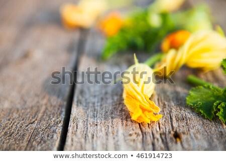 abobrinha · abobrinha · flores · branco - foto stock © yatsenko