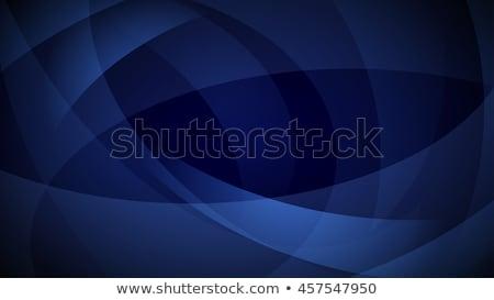 Kék vektor absztrakt hajlatok vonalak sablon Stock fotó © fresh_5265954