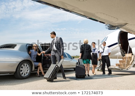 Woman pilot and private business airplane Stock photo © artfotodima