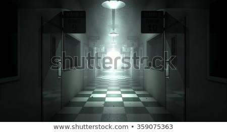 Mental Asylum Haunted stock photo © albund