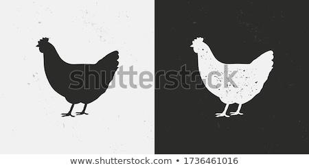 grunge · vogel · eieren · nest · Pasen · natuurlijke - stockfoto © lubavnel