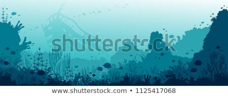 Stock fotó: Tengeri · állatok · úszik · tenger · illusztráció · háttér · művészet