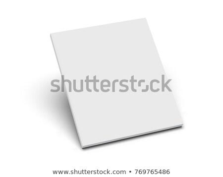 ingesteld · boeken · recht · gerechtelijk · hamer · boek - stockfoto © ordogz