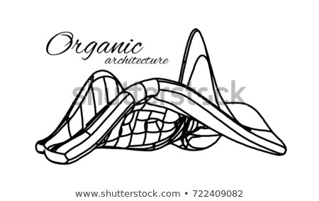 Organic architecture. The concept of unity with nature including smooth lines and transitions. Stock photo © m_pavlov