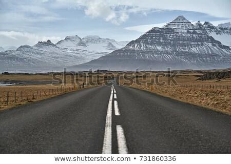 festői · út · Izland · égbolt · fű · tájkép - stock fotó © bezikus