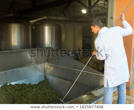 Grape sorter and press in winery Stock photo © daboost