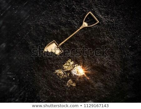 Arany bitcoin ásó bányászat szimbólum pénz Stock fotó © alexmillos