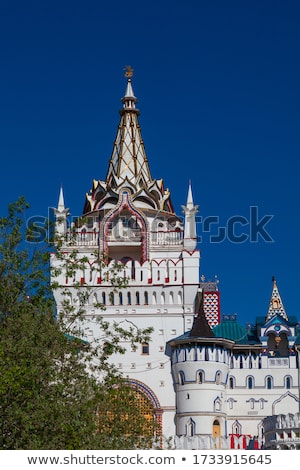 Fairytale castle with a blue domed roof stock photo © bedlovskaya